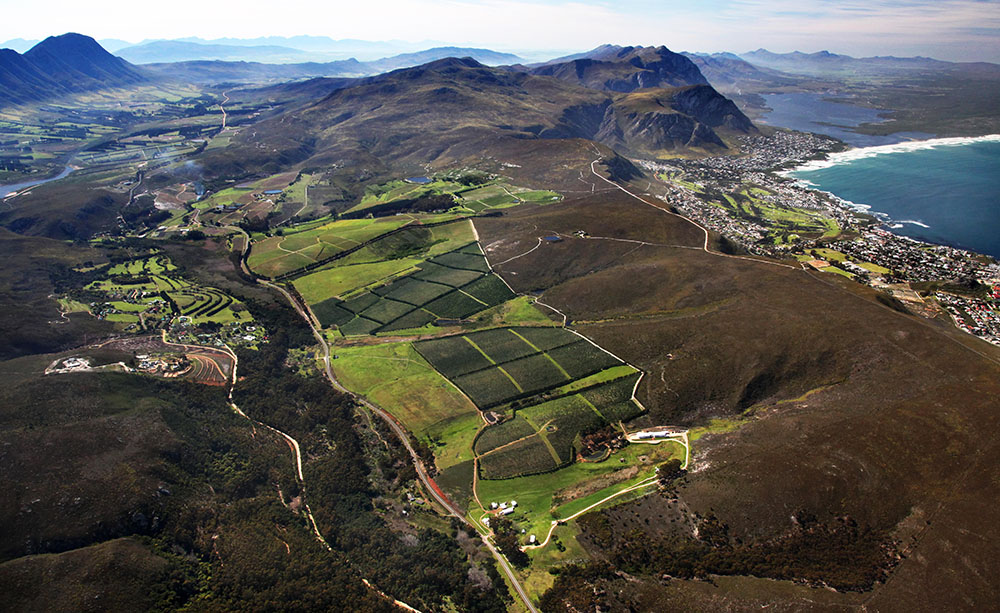 The Hemel-en-Aarde Valley