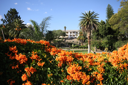 Tintenpalast in Windhoek, Namibia with flowers and palm trees