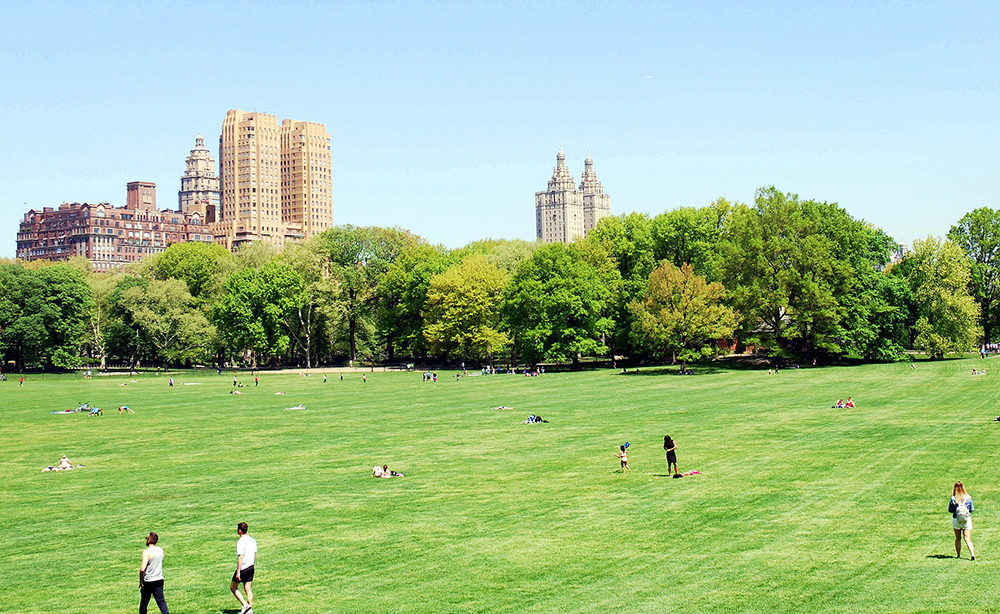 The Sheep Meadow, Central Park, New York City. Photo: Roland Turner Flickr