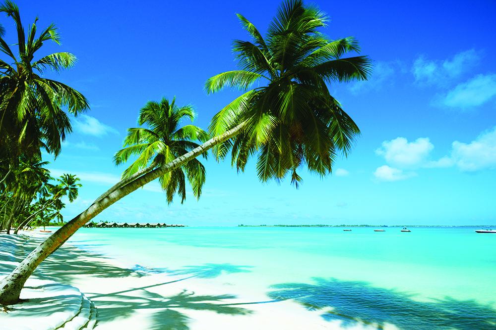 Beautiful beach resort in Mauritius