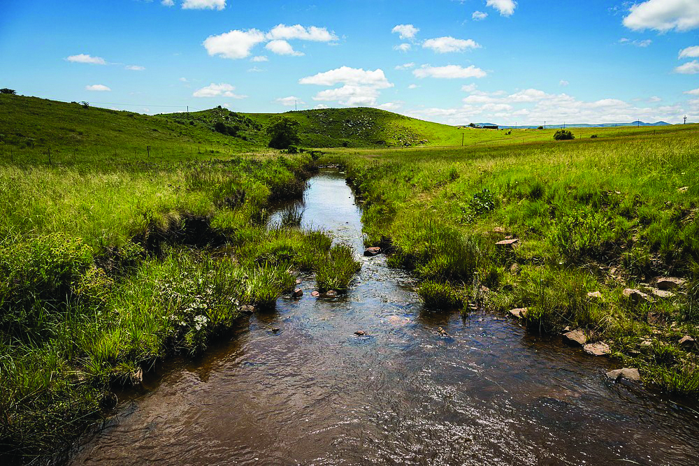 High-lying grasslands are important for water security as they give rise to the rivers that supply many of our towns and cities.