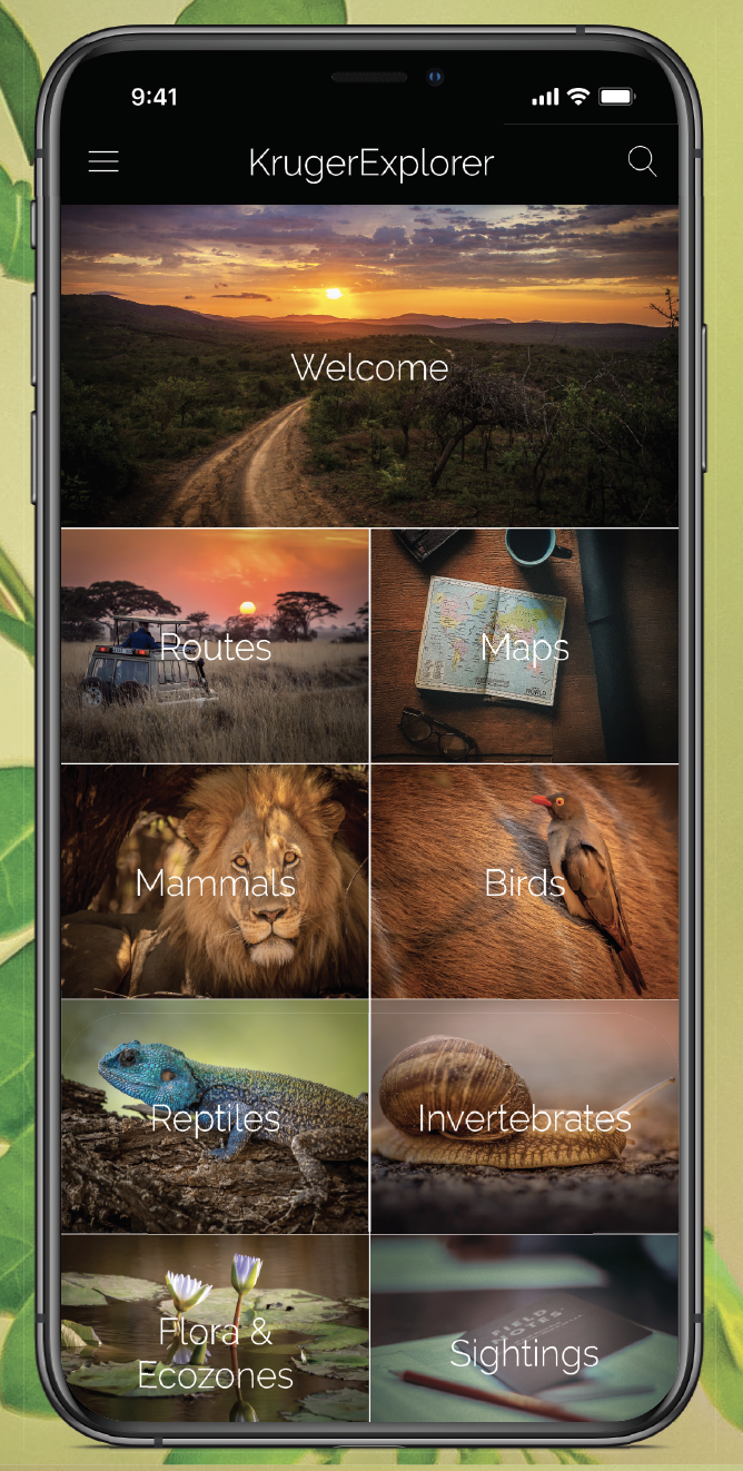 KrugerExplorer App Phone